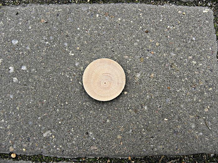 drevene-kolecko-bez-gravirovani-buk-vetvovy-predni-strana